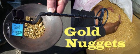 Raw gold detector