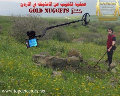 جهاز GOLD NUGGETS متخصص لكشف الذهب الخام
