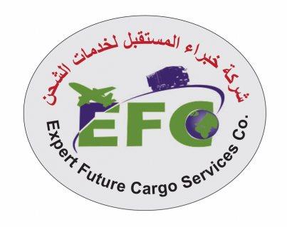 شركة شحن ونقل السيارات من دبي الى السودان 00971507828316